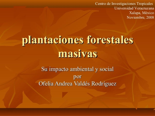 Centro de Investigaciones Tropicales Universidad Veracruzana Xalapa, México Noviembre, 2008  plantaciones forestales masiv...
