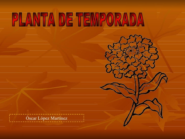 PLANTA DE TEMPORADA Óscar López Martínez