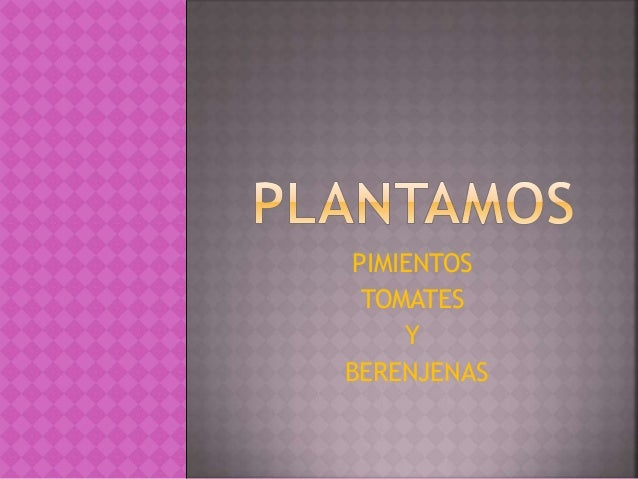 PIMIENTOS TOMATES Y BERENJENAS