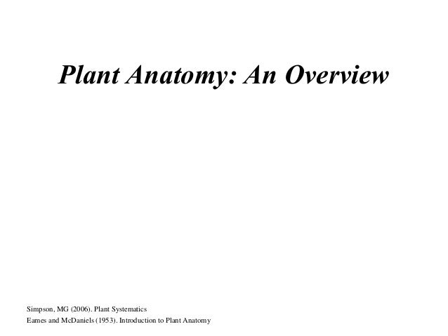 Plant Anatomy: An Overview Simpson, MG (2006). Plant Systematics Eames and McDaniels (1953). Introduction to Plant Anatomy