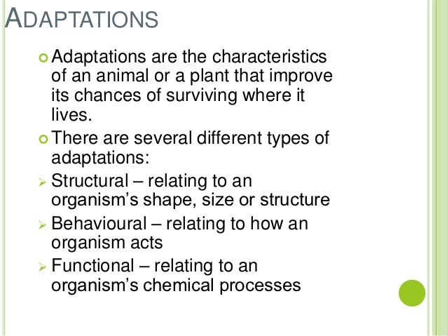adaptive features of plants and animals First, in a physiological sense, an animal or plant can adapt by adjusting to its immediate environment—for instance, by changing its temperature or metabolism with an increase in altitude second, and more commonly, the word adaptation refers either to the process of becoming adapted or to the features of organisms that.