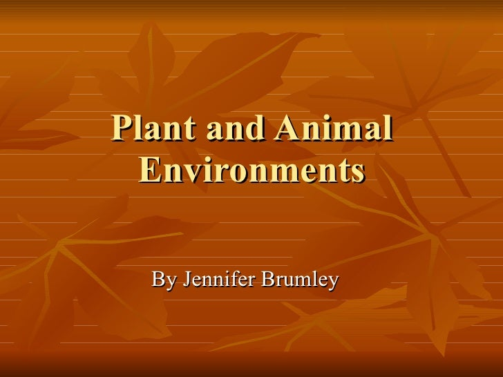 Plant and Animal Environments By Jennifer Brumley