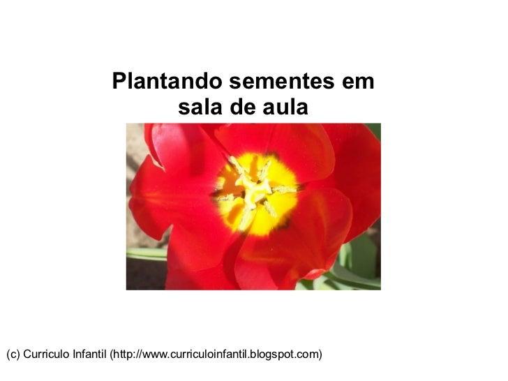 Plantando sementes em sala de aula (c) Curriculo Infantil (http://www.curriculoinfantil.blogspot.com)