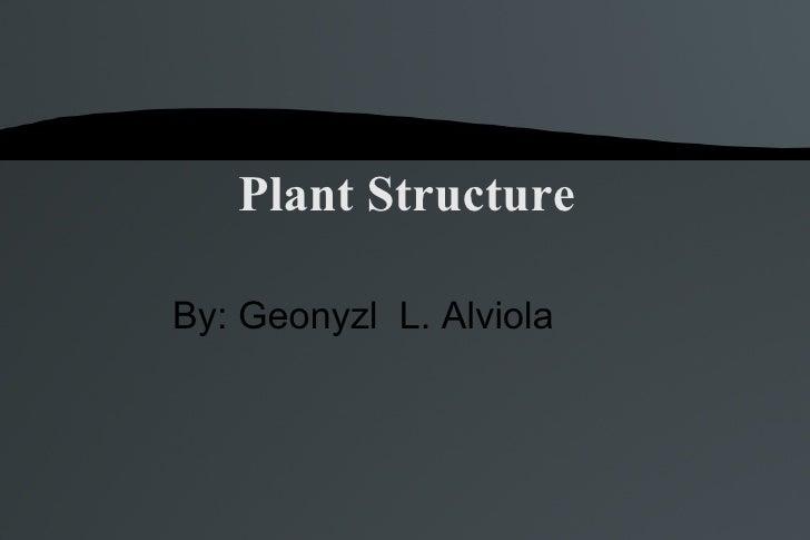 Plant Structure By: Geonyzl  L. Alviola