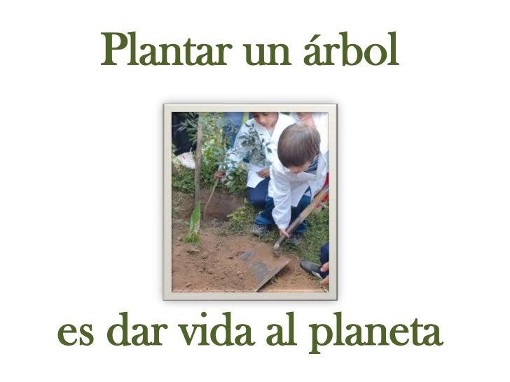 Plantar un árbol<br />es dar vida al planeta<br />