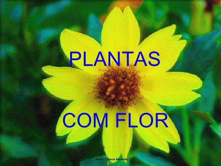 PLANTAS    COM FLOR Autor: Liliana Azevedo