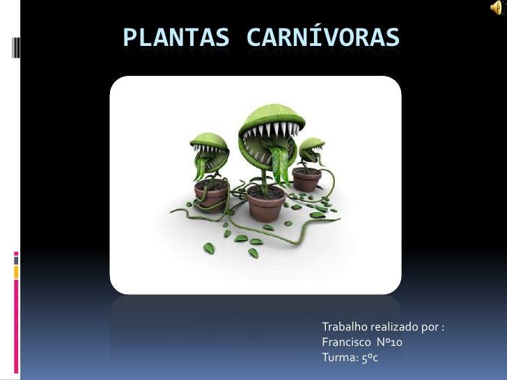 Plantas carnívoras <br />Trabalho realizado por :<br />Francisco  Nº10 <br />Turma: 5ºc<br />