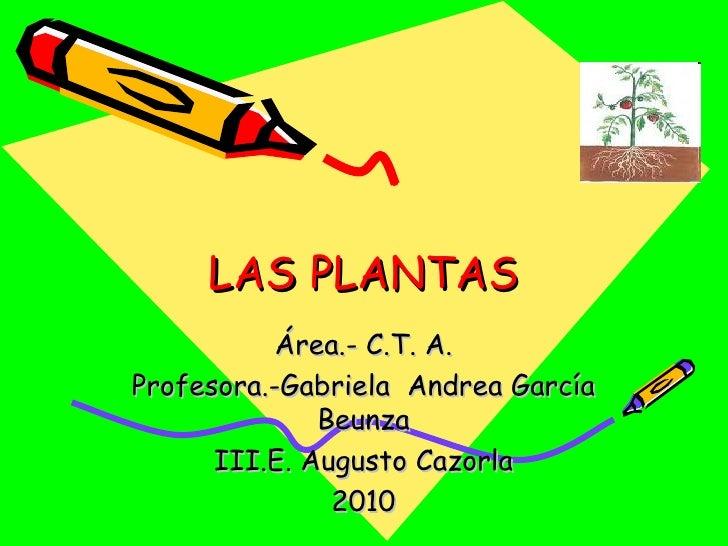 LAS PLANTAS <ul><li>Área.- C.T. A. </li></ul><ul><li>Profesora.-Gabriela  Andrea García Beunza </li></ul><ul><li>E. August...