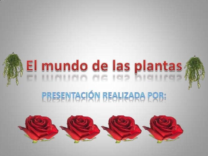 El mundo de las plantas<br />Presentación realizada por: <br />