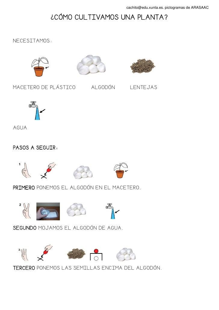cachito@edu.xunta.es. pictogramas de ARASAAC            ¿CÓMO CULTIVAMOS UNA PLANTA?NECESITAMOS:MACETERO DE PLÁSTICO     A...