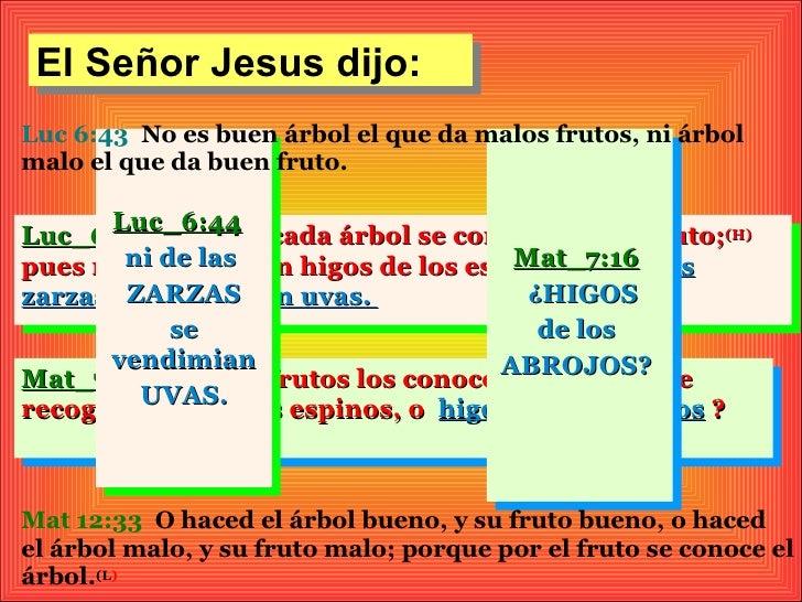 El Señor Jesus dijo:Luc 6:43 No es buen árbol el que da malos frutos, ni árbolmalo el que da buen fruto.       Luc_6:44Luc...