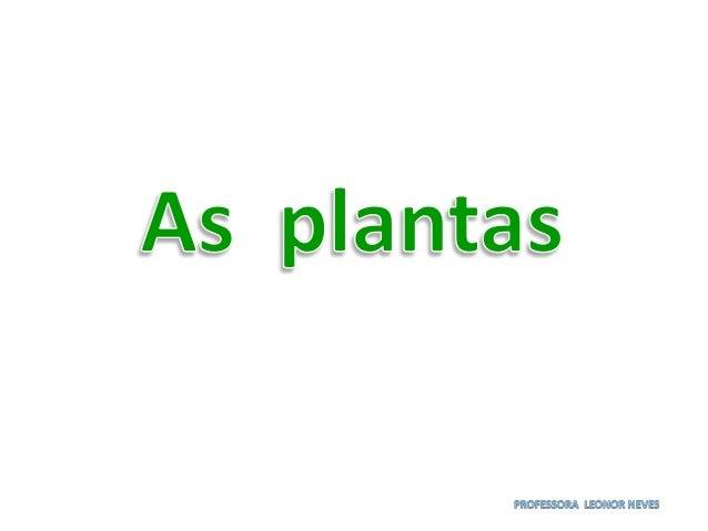 flor Que dá origem ao fruto raiz Por onde a planta se alimenta. Caule Mantém a planta direita e transporta os nutrientes a...