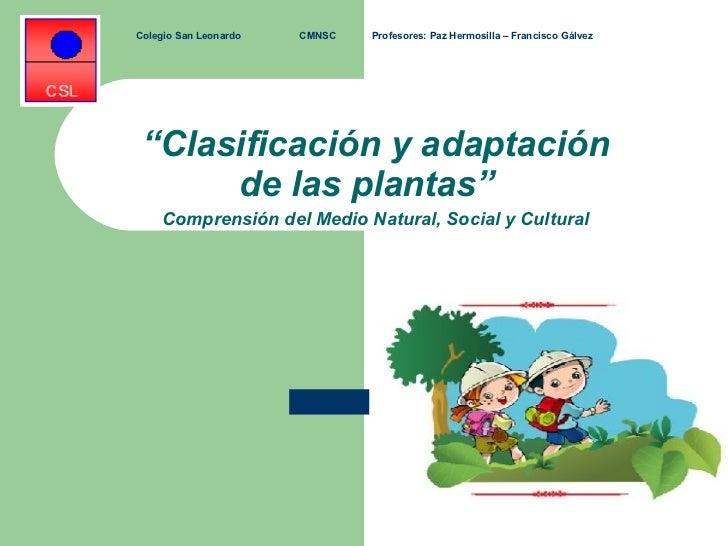 """Clasificación y adaptación de las plantas"""" Comprensión del Medio"""