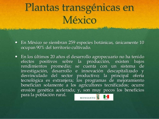 plantas transg u00e9nicas