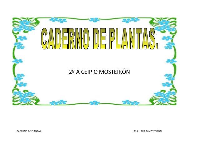2º A CEIP O MOSTEIRÓN  CADERNO DE PLANTAS  2º A – CEIP O MOSTEIRÓN