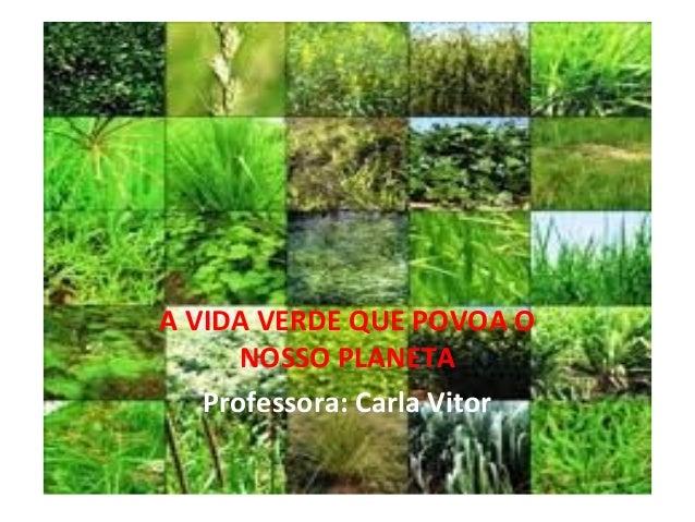 A VIDA VERDE QUE POVOA O NOSSO PLANETA Professora: Carla Vitor
