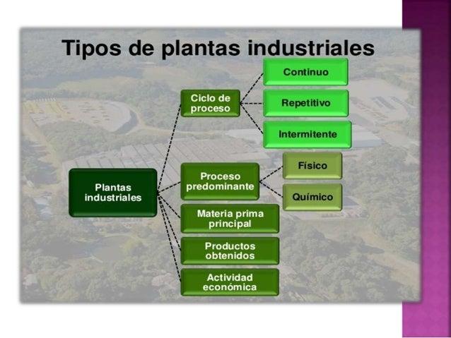 Plantas industriales related keywords plantas for Concepto de plantas ornamentales