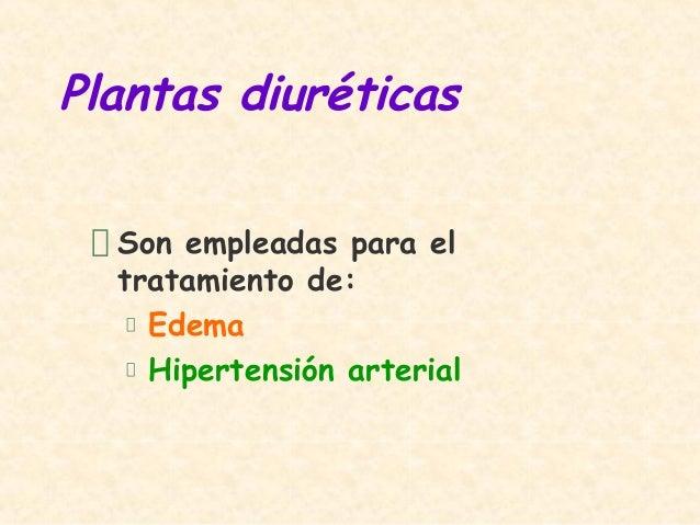 Plantas diuréticasSon empleadas para eltratamiento de:EdemaHipertensión arterial