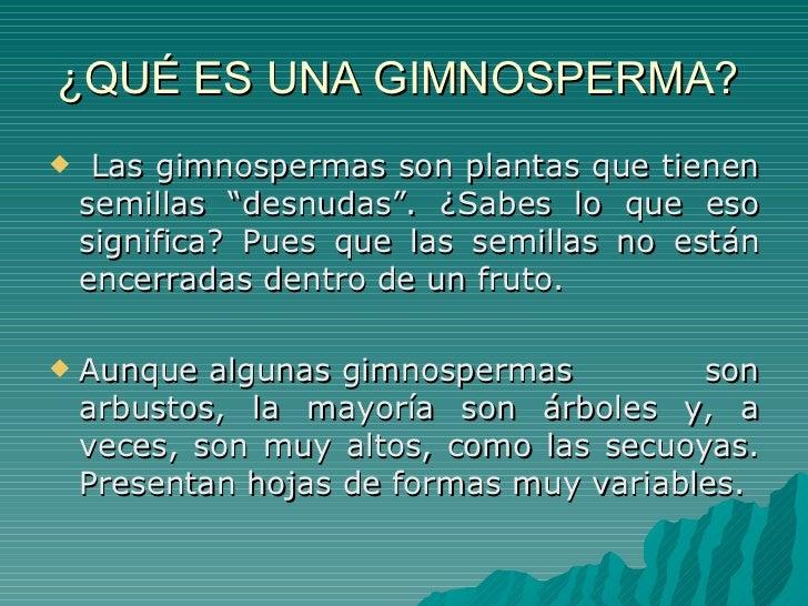 Plantas gimnospermas y angiospermas - Lista nombre arbustos ...