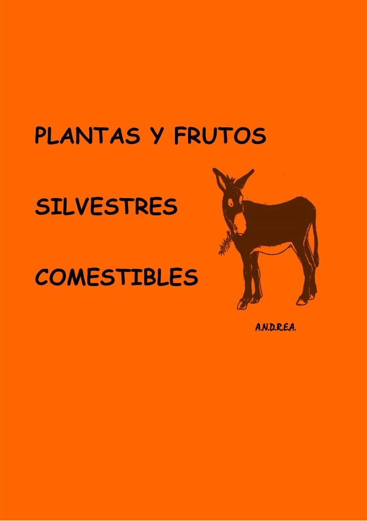 PLANTAS Y FRUTOSSILVESTRESCOMESTIBLES               A.N.D.R.E.A.