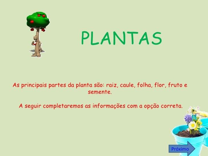 As principais partes da planta são: raiz, caule, folha, flor, fruto e semente. A seguir completaremos as informações com a...