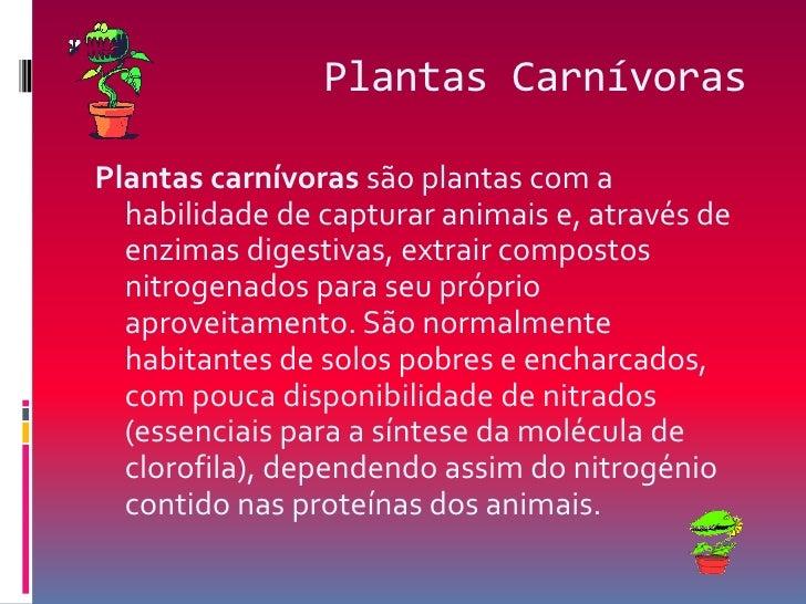Plantas Carnívoras<br />Plantas carnívoras são plantas com a habilidade de capturar animais e, através de enzimas digestiv...