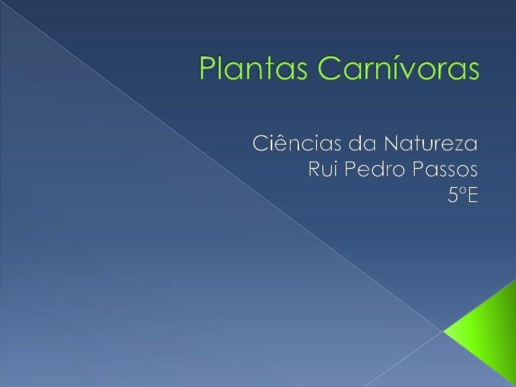 Plantas Carnívoras<br />Ciências da Natureza<br />Rui Pedro Passos<br />5ºE<br />