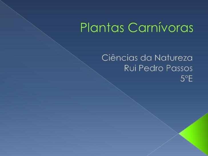    As plantas carnívoras são na sua    maioria pequenas e delicadas.   As plantas são consideradas    carnívoras porque ...