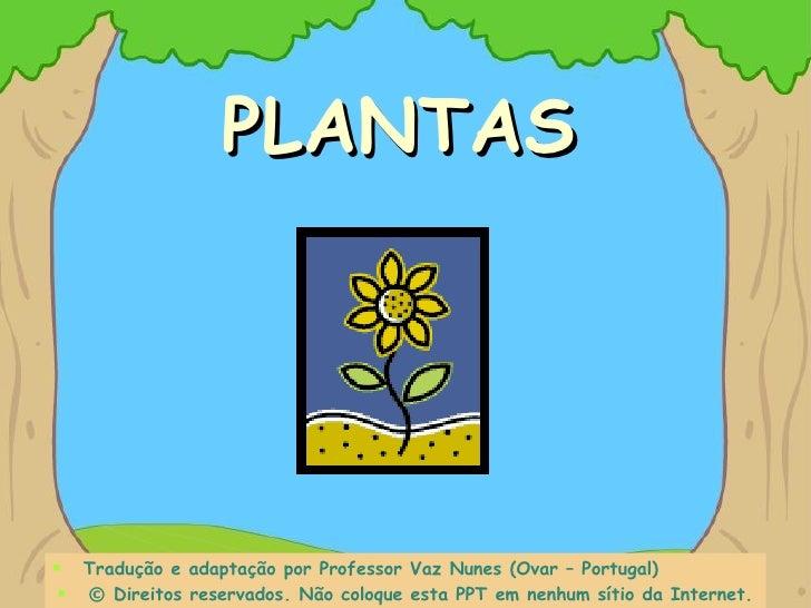 PLANTAS <ul><li>Tradução e adaptação por Professor Vaz Nunes (Ovar – Portugal) </li></ul><ul><li>©   Direitos reservados. ...