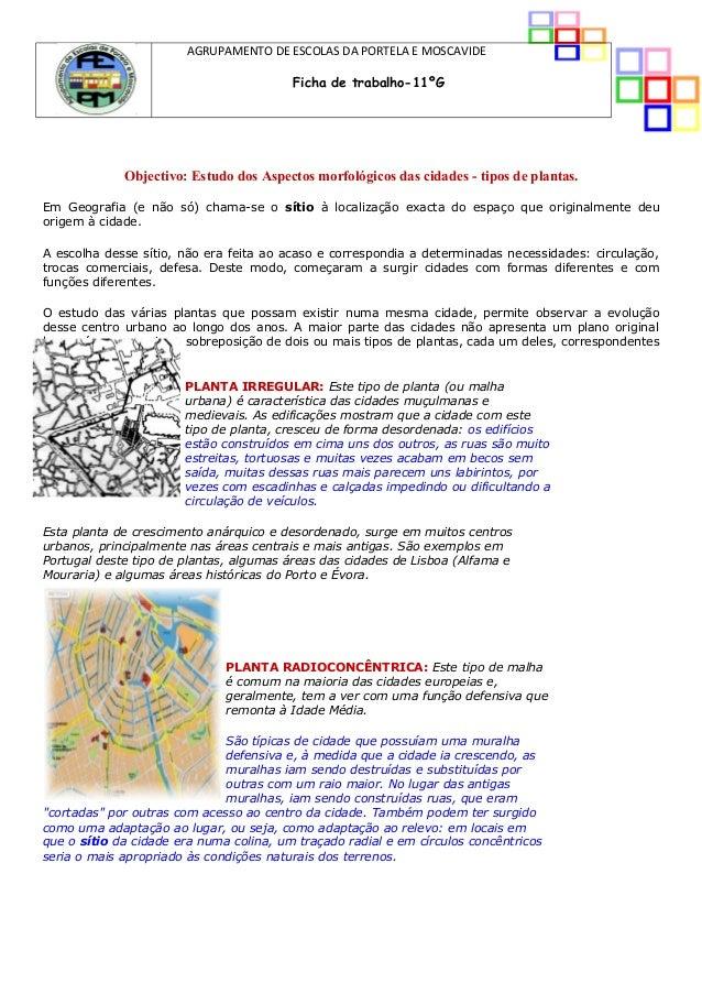 AGRUPAMENTO DE ESCOLAS DA PORTELA E MOSCAVIDE Ficha de trabalho-11ºG Objectivo: Estudo dos Aspectos morfológicos das cidad...