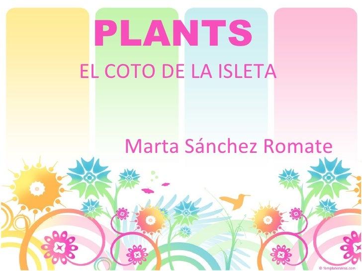 PLANTS   EL COTO DE LA ISLETA Marta Sánchez Romate
