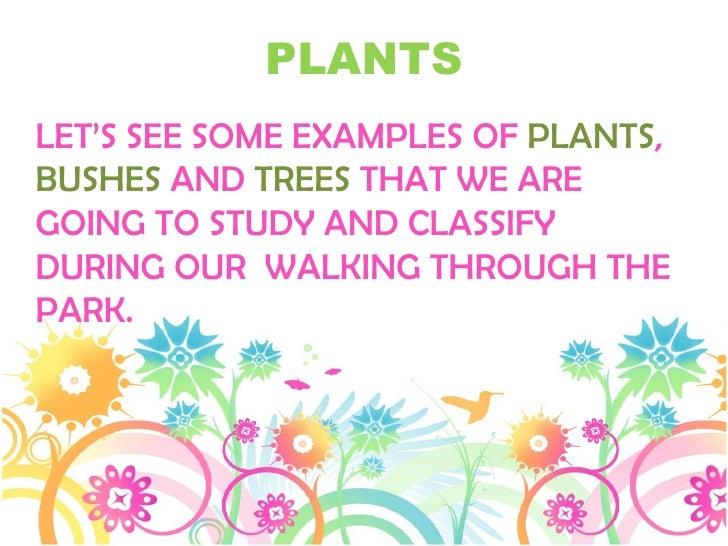 Plantas del cra 2 Slide 2