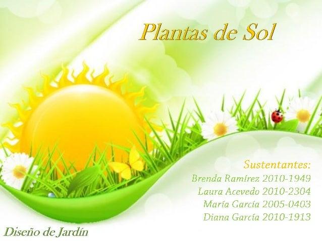 Plantas de sol grupo 1 - Plantas de sol y sombra ...