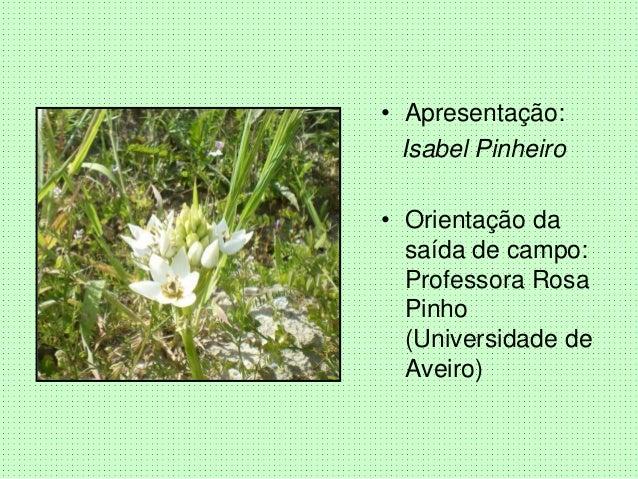 • Apresentação: Isabel Pinheiro • Orientação da saída de campo: Professora Rosa Pinho (Universidade de Aveiro)