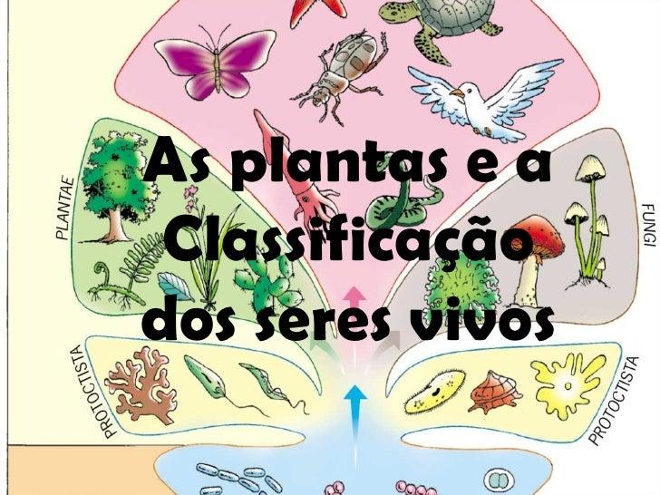 As plantas e a Classificação dos seres vivos