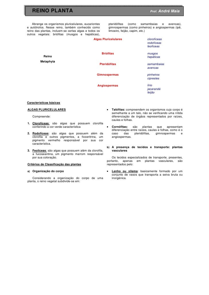 REINO PLANTA                                                                              Prof.   André Maia    Abrange os...