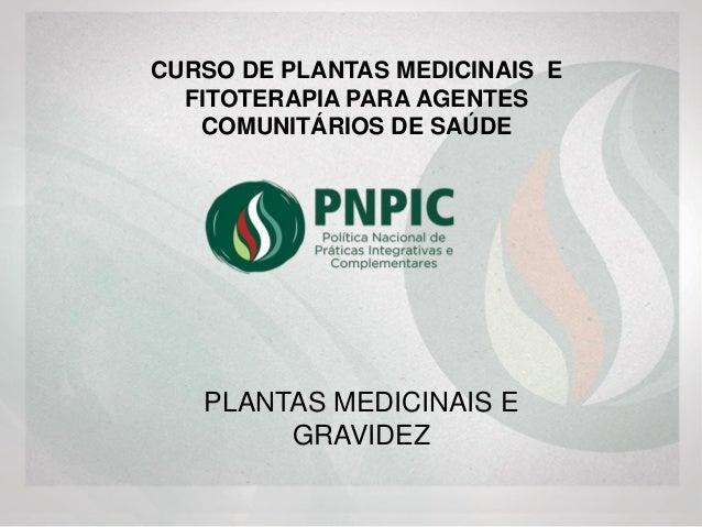PLANTAS MEDICINAIS E GRAVIDEZ CURSO DE PLANTAS MEDICINAIS E FITOTERAPIA PARA AGENTES COMUNITÁRIOS DE SAÚDE