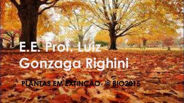 E.E. Prof. Luiz Gonzaga Righini PLANTAS EM EXTINÇÃO- @ BIO2015