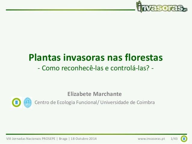 Plantas invasoras nas florestas  - Como reconhecê-las e controlá-las? -  Elizabete Marchante  Centro de Ecologia Funcional...