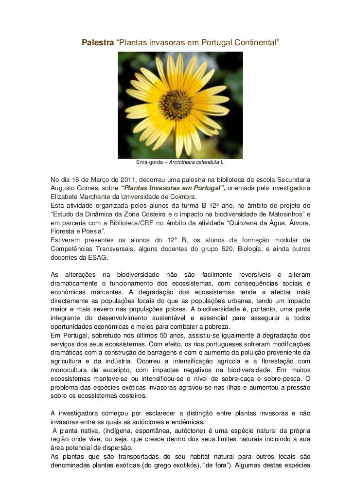 "Palestra ""Plantas invasoras em Portugal Continental""                            Erva-gorda – Arctotheca calendula L.No dia..."