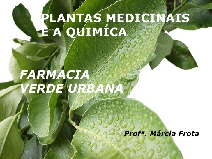 PLANTAS MEDICINAIS <br />E A QUIMÍCA<br />FARMACIA <br />VERDE URBANA<br />Profª. Márcia Frota<br />
