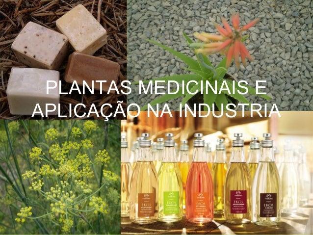 PLANTAS MEDICINAIS E APLICAÇÃO NA INDUSTRIA