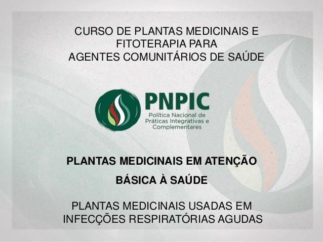 PLANTAS MEDICINAIS USADAS EM INFECÇÕES RESPIRATÓRIAS AGUDAS PLANTAS MEDICINAIS EM ATENÇÃO BÁSICA À SAÚDE CURSO DE PLANTAS ...
