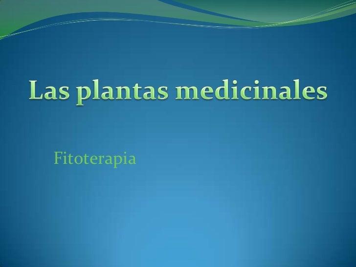Las plantas medicinales<br />Fitoterapia<br />