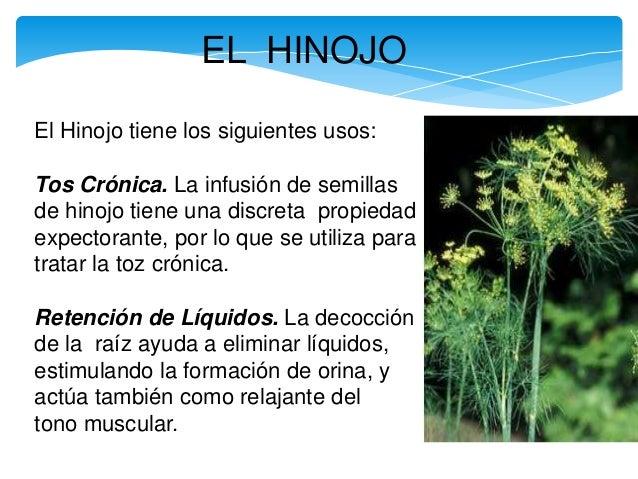 Los modos públicos del tratamiento por las hierbas de las lombrices