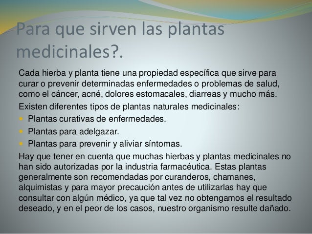 Plantas medicinales for Que son las plantas ornamentales y para que sirven