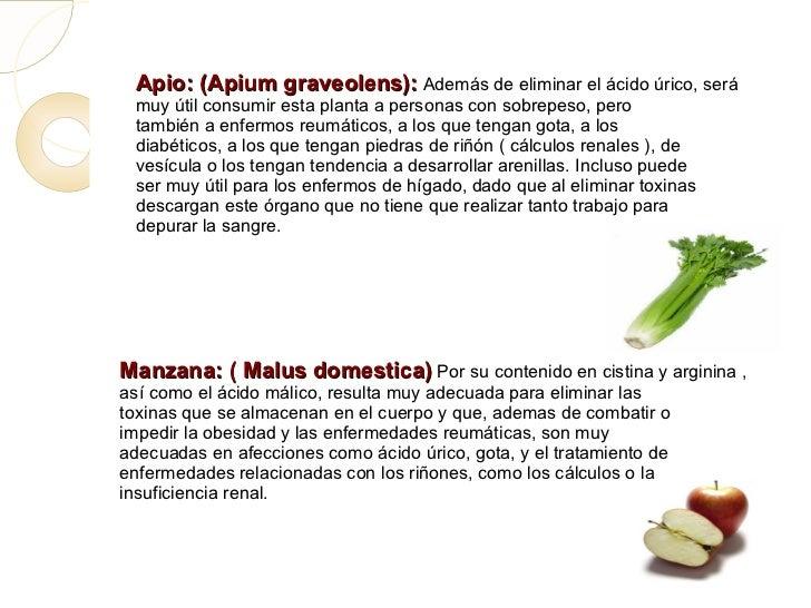 Que alimentos consumir para eliminar el acido urico alimentos contraindicados para enfermedad - Alimentos que ayudan a eliminar el acido urico ...