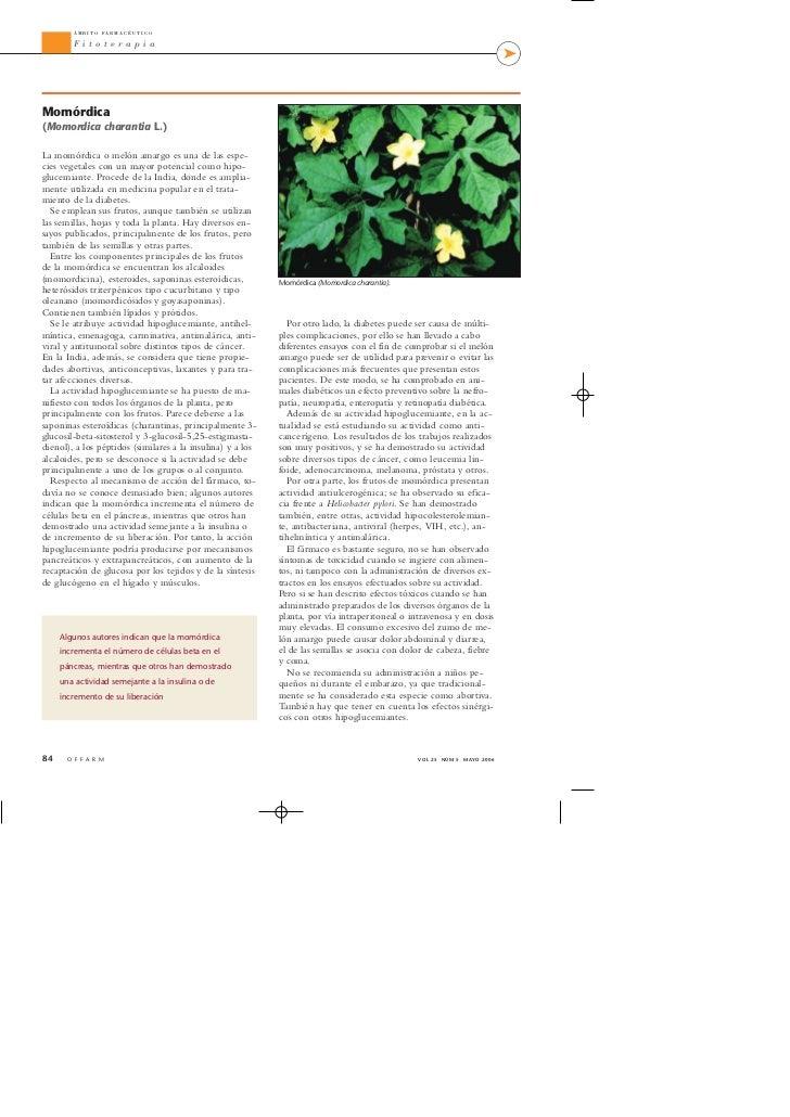 Plantas medicinales hipoglucemiantes