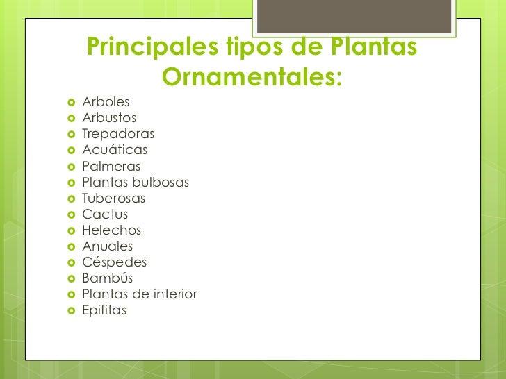 Plantas ornamentales - Clases de flores y sus nombres ...