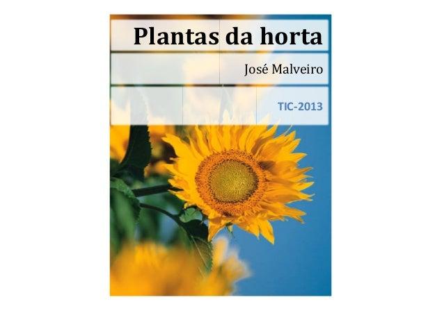 José MalveiroTIC-2013Plantas da horta
